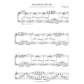 Walking in the Air Concert Piano Version D Minor (2 Pages)